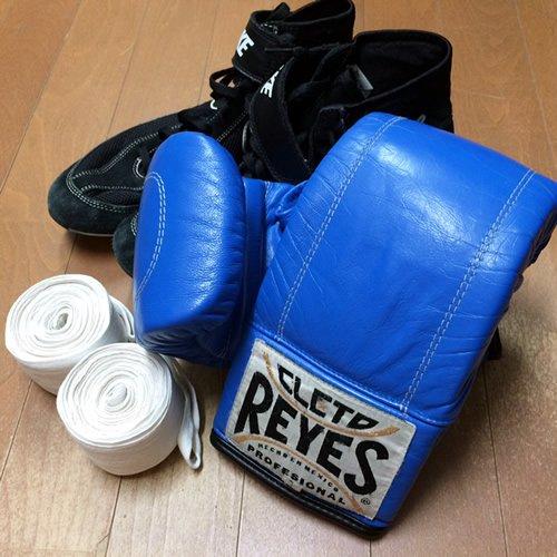 ボクシング用道具